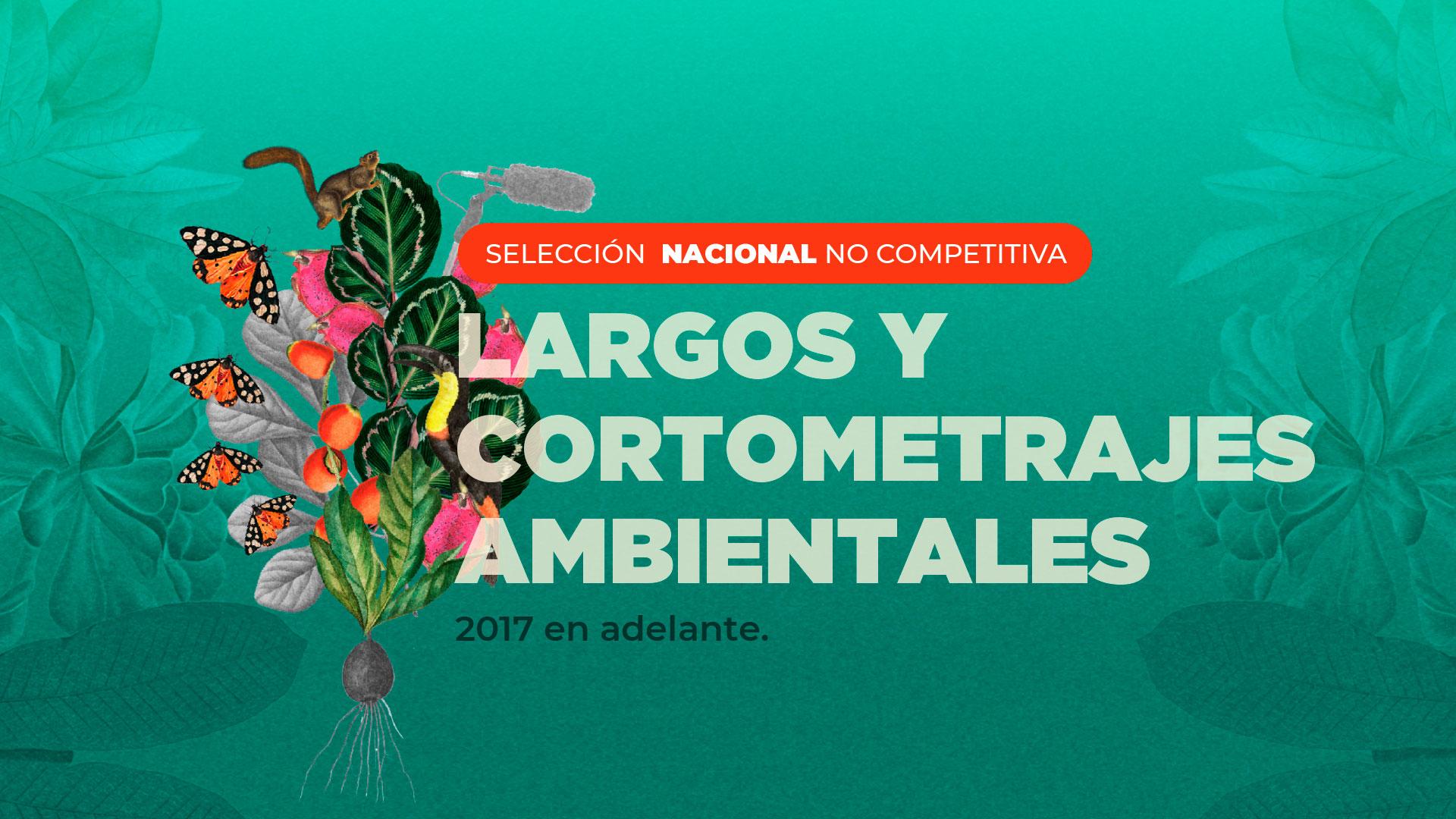 Selección Nacional No Competitiva 2021